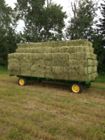 Square Bale Hay
