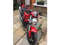 Ducati Monster 696+ 2010