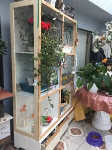 Birds & Cages display Unit