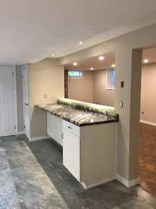 Newly Reno'd, Elegant 1 Bed Basement Apt in Old Hespeler Village