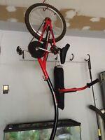 Schwinn Co-pilot bike