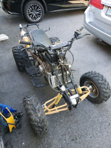 Project ATV Chinese 250 4 speed w/ reverse