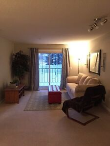 Two bedroom apartment for rent West/Central