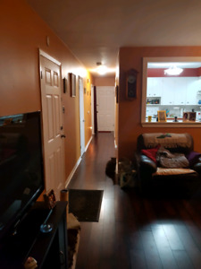 1 bedroom heat and lights included winter ave