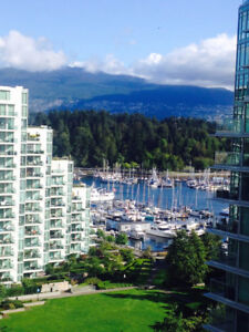 Fully furnished apartment available in Coal Harbour