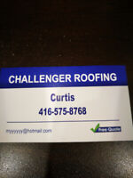 Professional roofing service!