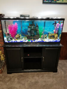 55 gallon fish tank and stand basically new o.b.o