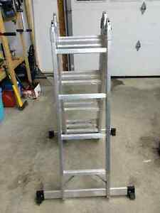 Folding Extension Ladder