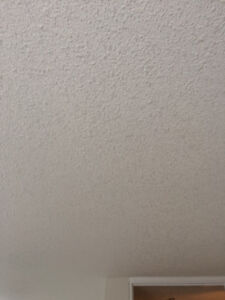 supply/install Top quality Ceiling Texturing, with a truck and h