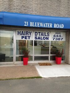 The Cleanest Grooming Salon in Town!
