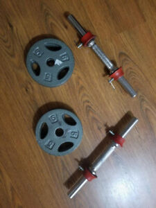 Standard dumbbell bars with 20 lb total weight plates