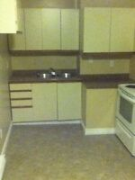One bedroom plus den bright and spacious new appliances