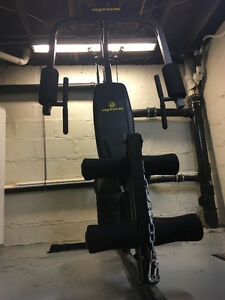 home gym / weight bench