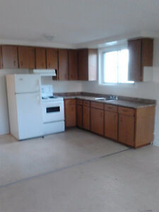 1 BDRM BASEMENT APT - AVAILABLE NOW - 75 NORTH FRONT ST.
