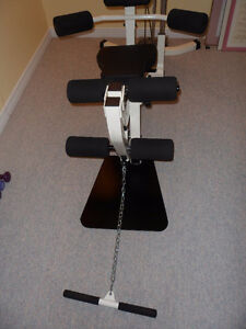 Complete Home Gym London Ontario image 6