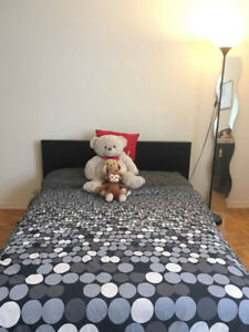 Double  Bed and Comfortable Spring Mattress