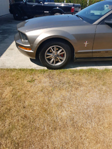 2005 Mustang for sale