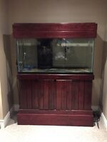 90 gallon aquarium with two sumps, one acrylic,