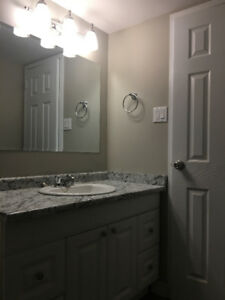 TOTALLY RENOVATED HUGE 2 BDRM APARTMENT - ALL UTILITIES INCLUDED