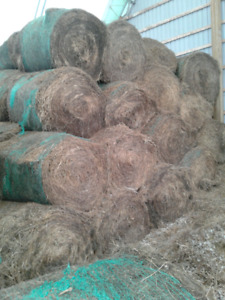 2nd Cut HAY  CATTLE EQUIPMENT  & STRAW