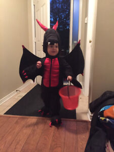 Halloween Costumes for a family Plus decorations