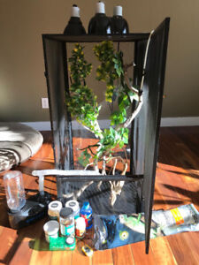 COMPLETE REPTILE ENCLOSURE WITH SUPPLIES