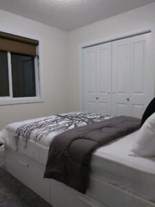 Furnished room for rent in luxury house near Century Park