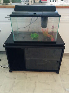 10 Gallon Tank, Accessories and Stand