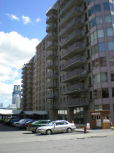 Furnished one bedroom condo in Downtown