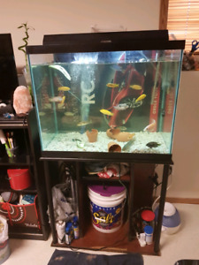 56 GALLON TANK for $100.00 you can text or call me @ 3064340430