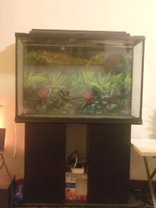Large aquarium with filter