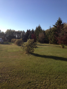 Farm land with yard and buildings Prince Albert area for sale