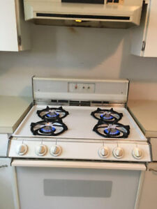 Free gas stove with vent and bathroom sink with faucet