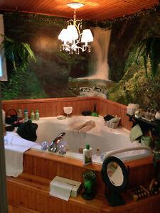 Private Room for Rent in Beautiful Home in Le Plateau(Hull) Gatineau Ottawa / Gatineau Area image 3