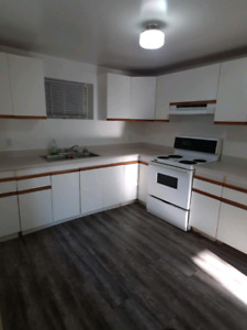 FULLY PAINTED AND NEW FLOORING W/ PRIVATE LAUNDRY AVAILABLE ASAP
