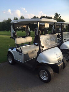 2013 EZGO RXV Golf Cart Silver / Alloys 48V electric Kitchener / Waterloo Kitchener Area image 1