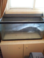 50+ GALLON AQUARIUM W/STAND
