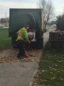 Fall / Leaf / Yard cleanup / Eavestrough Cleaning Kitchener / Waterloo Kitchener Area image 3