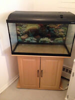 Aquarium (Waterhome)with Stand In