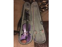 Purple Stentor Harlequin Violin