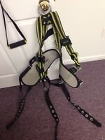 Harness and tool belt 175