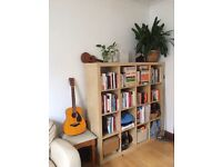 Spacious double room with attached terrace in Stoke Newington