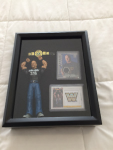 Stone Cold Steve Austin WWE/WWF Shadow Box Display