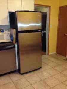 Fridge Stainless Steel