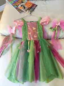 Fairy costume from Child's Place 5/6 size St Thomas