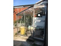 Lean to green house *bargain*