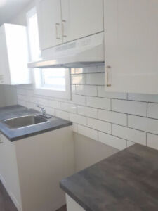 Completely renovated 3 bedroom 1 bathroom for rent