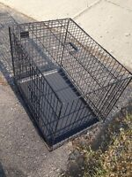 Large collapsible metal dog crate