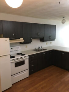 Apartment for rent in Cobden for Seniors (55 plus) only