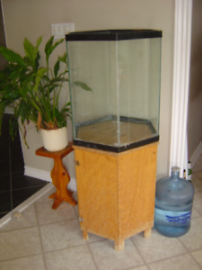 35 gallon Hexagonal tank